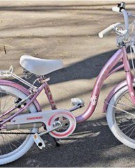 Candados Bicicleta y Moto